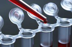 Фібриноген в крові – норма