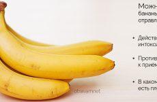 Можна їсти банани при отруєнні