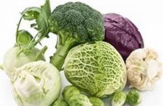 Отруєння капустою – квашеної,морський,тушкованої,кольоровий – лікування
