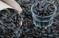 Отруєння насінням соняшника – симптоми, перша допомога і лікування