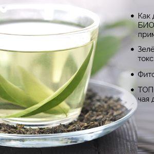 Чай евалар біо для очищення організму, фіточай, трав'яний, зелений чай