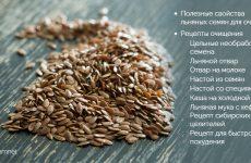 Насіння льону для схуднення і очищення організму від шлаків: як приймати