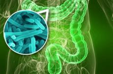 Відновлення кишечника після отруєння їжею: препарати і продукти