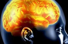 Інтоксикація головного мозку: види і лікування, причини і симптоми