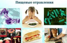 Профілактика харчових отруєнь: як не попастися на гачок бактеріям