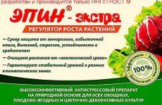 Епін для кімнатних рослин: властивості, застосування.