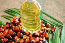 Шкода і користь пальмової олії для здоров'я людини