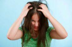 Як вивести вошей у дитини в домашніх умовах, ефективні засоби