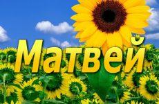 Матвій: значення імені та характер