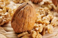 Можна їсти волоські горіхи при грудному вигодовуванні – користь і шкоду для мами і малюка