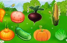 Овочі та фрукти в картинках і загадках