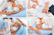 Правильне прикладання при грудному вигодовуванні – всі тонкощі процедури