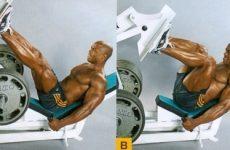 Найкращі вправи для тренування ніг у залі для чоловіків та жінок