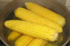 Варена кукурудза для мам і дітей: користь чи шкода?
