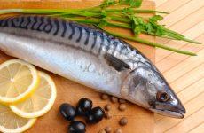 Морська скумбрія, її особливості і рецепти