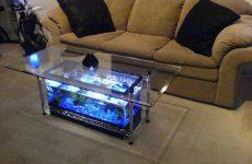 5 найбільш незвичайних домашніх акваріумів