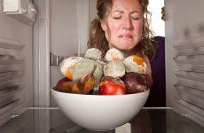 Неприємний запах в холодильнику – звідки береться і як позбутися
