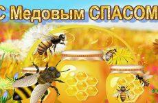 Медовий Спас у 2020 році: якого числа, дата свята