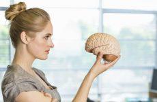 Мозок жінки взаємодіє з маткою: нове дослідження, яке справило фурор в гінекології