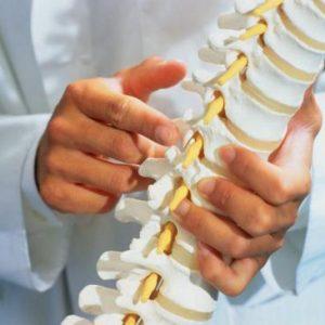 Зв'язки м'язів хребта: анатомія та види пошкоджень, способи лікування у шийному, грудному і поперековому відділі з допомогою методів мануальної терапії