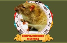Східний гороскоп на 2020 рік Щура: по року народження