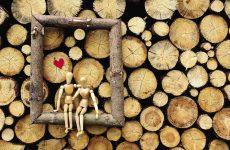 Що подарувати на дерев'яну весілля оригінальна і прикольне: чоловіку, дружині, друзям