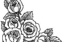 Розмальовки Квіти: роздрукувати картинки
