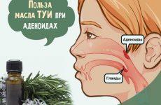 Масло туї при аденоїдах для дітей: інструкція по застосуванню