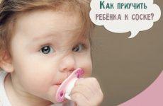 Як привчити дитину до соски: поради Комаровського