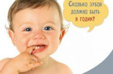 Скільки зубів має бути у дитини в 1 рік (норми і відхилення)
