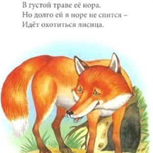Загадки про тварин з відповідями