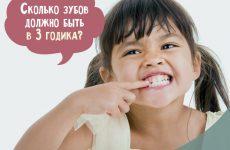 Скільки зубів у дитини в 3 роки має бути