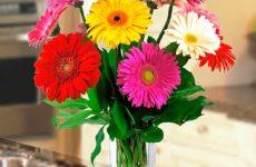 Що подарувати мамі на 55-річний ювілей – оригінальні ідеї подарунка на день народження