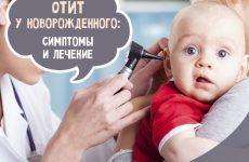 Отит у новонародженого: симптоми і лікування в домашніх умовах