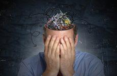В який час доби краще всього працює мозок
