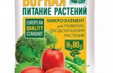 Борна кислота для рослин, допомога для городників