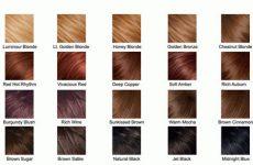Натуральне фарбування волосся, міняємо імідж яскравими фарбами