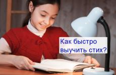 Як швидко вивчити вірш з літератури — кращі техніки