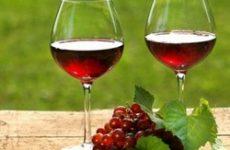 Вино з калини в домашніх умовах